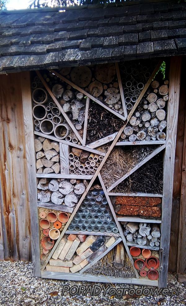 dom_owadów
