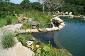 Stawy kąpielowe - naturalne baseny
