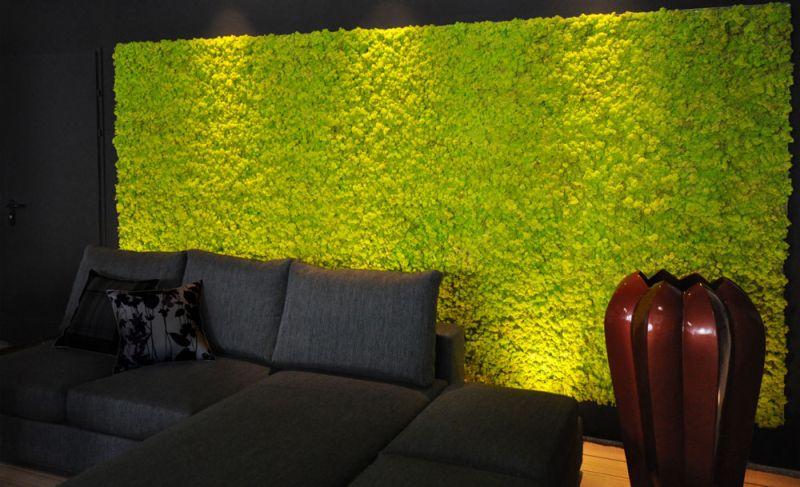 Zielone ściany Z Mchu Mech Na ścianie Aranżacje Wnętrz