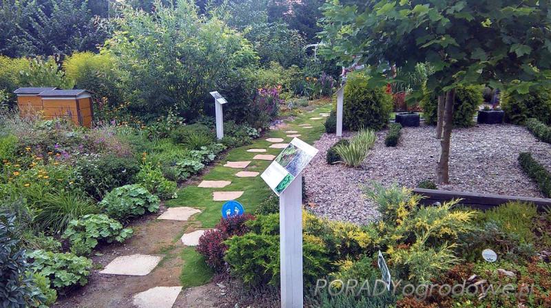 porady ogrodnicze lublin