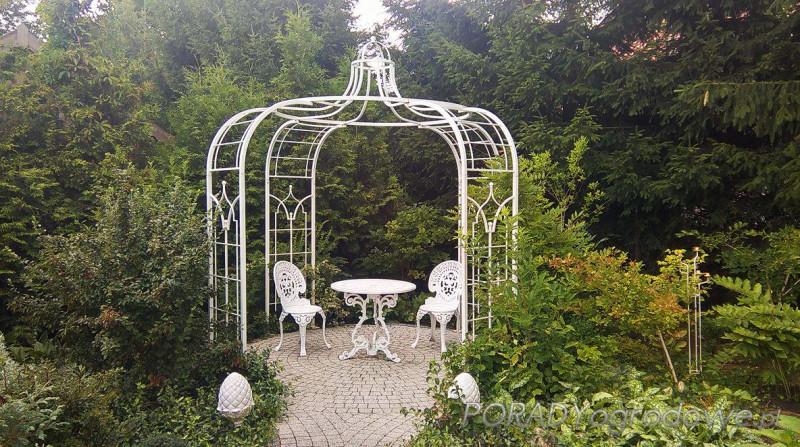 blog ogrodniczy ogród