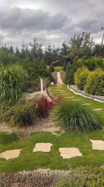 ogród 1