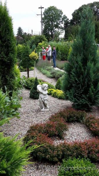 ogródek lublin