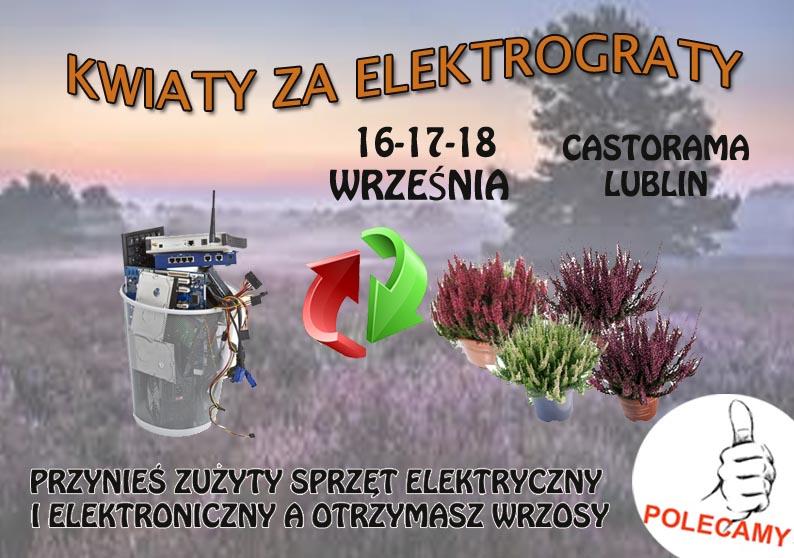 Wymien Elektrograty Na Kwiaty Wydarzenia W Lublinie