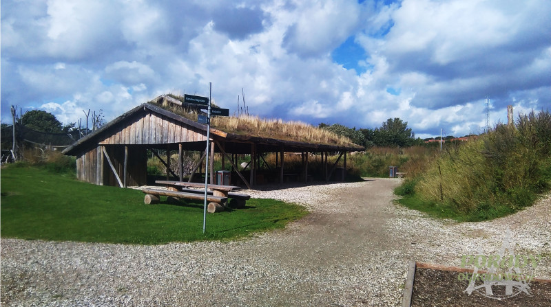 green-roofs-porady-ogrodnicze