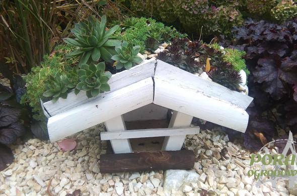 zielony dach w ogrodzie