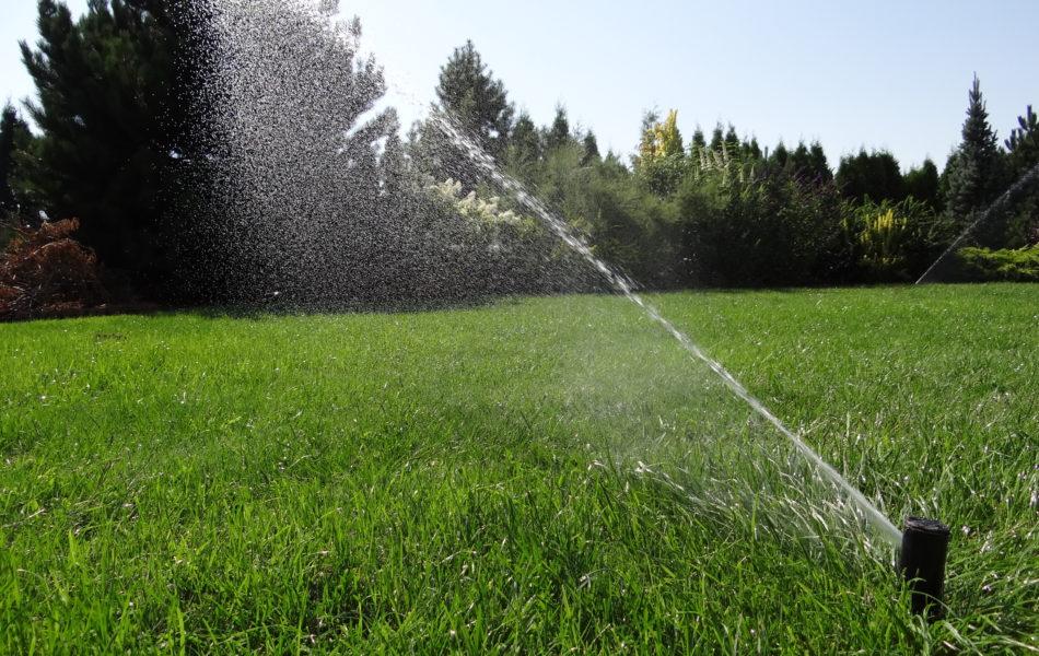nawadnianie-trawnika-zrob-to-sam