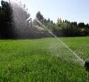 Nawadnianie trawnika – zrób to sam