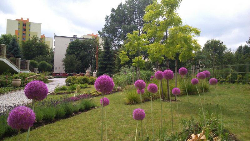 porady ogrodnicze 25