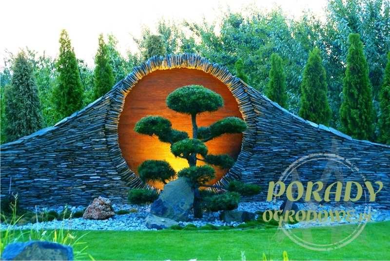 bonsai-w-orientalnym-ogrodzie