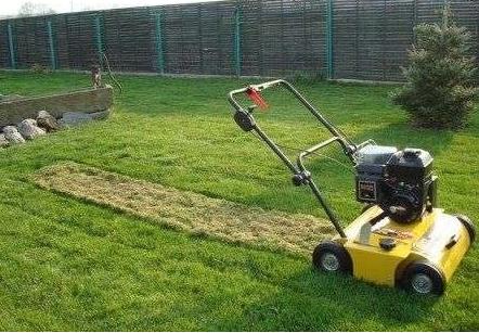 wertykulacja-trawnika-wiosna