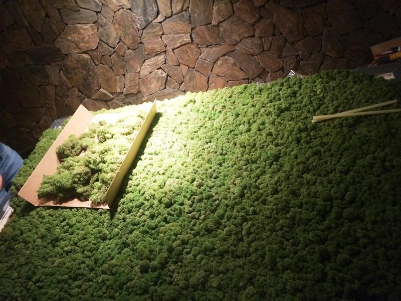 Jak zrobić zieloną ścianę z mchu.
