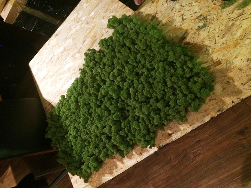 Jak zrobić zielony obraz z mchu
